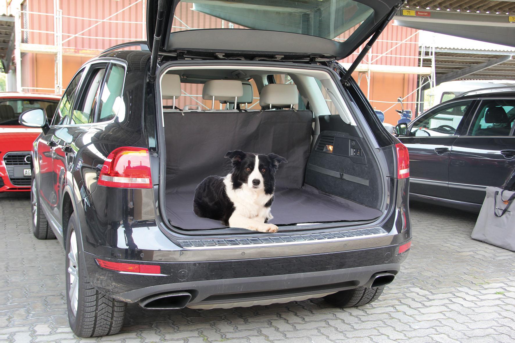 autoschondecken f rs auto reise transport hund. Black Bedroom Furniture Sets. Home Design Ideas
